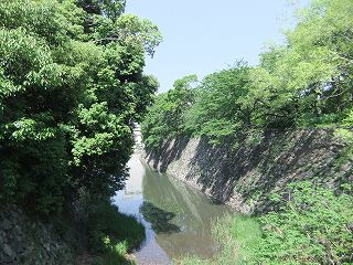 2011_0515(010).jpg