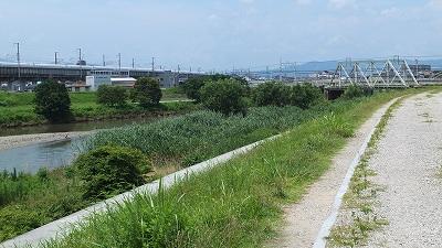 2012-07-22_8701.jpg