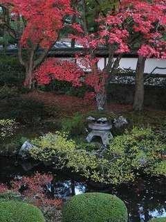 2012-11-14_10064.jpg