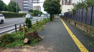 obiyama.jpg